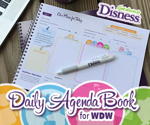 Get Down to Disness Daily Agenda Book