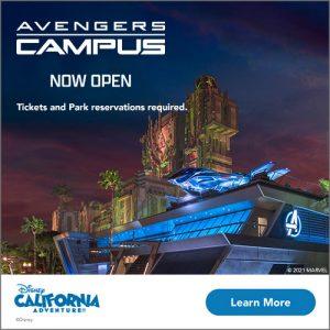 Avengers Campus Now Open